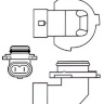 Лампа 12V HB4 9006 12/55W P22d